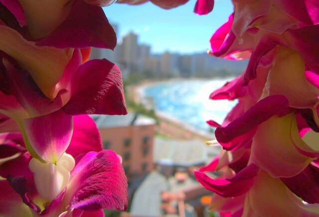 A lei in Waikiki (courtesy Peggy2012CreativeLenz on Flickr CC)