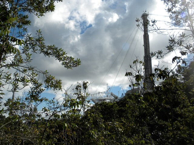 Arecibo Observatory Tower