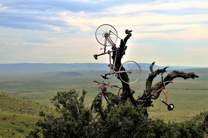Bicycle tree public art Alpine TX (photo by Diann Bayes)