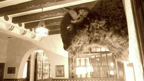 Bison head keeps watch on Hotel Paisano lobby in Marfa TX, taken with and edited on a phone (photo by Sheila Scarborough)