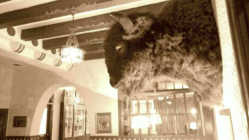 Bison head keeps watch on Hotel Paisano lobby in Marfa TX (photo by Sheila Scarborough)