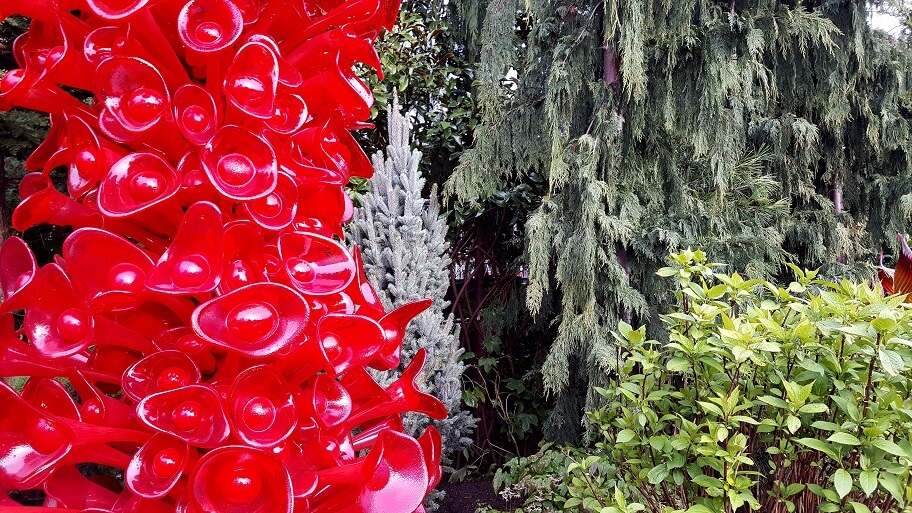 Chihuly Garden Seattle red contrast with green plants (photo by Sheila Scarborough