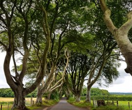 Game of Thrones King's Road