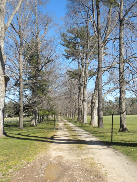 FDR's driveway in Hyde Park, NY