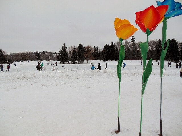 Giant flowers at Silver Skate Festival near the skating pond (photo by Sheila Scarborough)