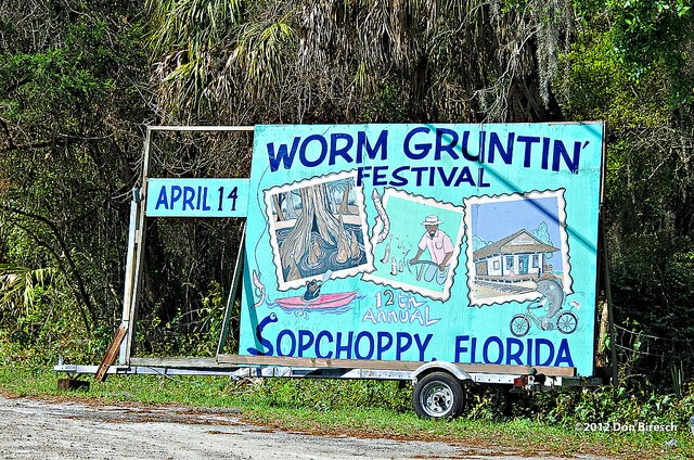 Fun in Sopchoppy, Florida, a U.S. election swing state (courtesy dfbphotos at Flickr Creative Commons)
