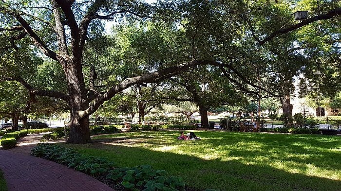Garden of Contentment Armstrong Browning Library Waco TX (photo by Sheila Scarborough)