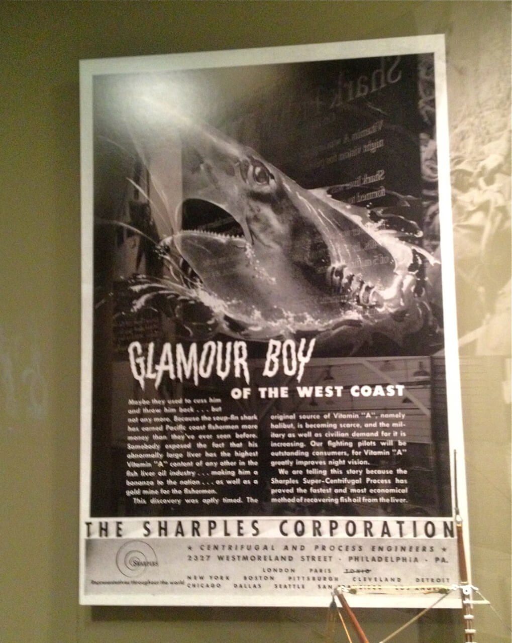 Columbia Maritime Museum Shark Exhibit