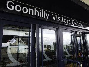 Goonhilly Visitors Centre, actually a satellite dish facility in Cornwall, UK (courtesy madnzany on Flickr CC)