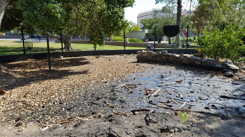Goopy fossil container at the La Brea Tar Pits in Los Angeles California (photo by Sheila Scarborough)