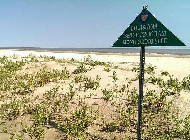 Holly Beach in southwest Louisiana on the Creole Nature Trail (photo by Sheila Scarborough)