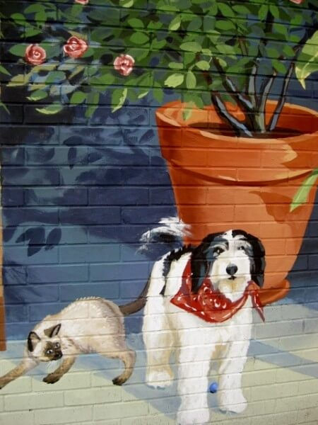 Homewood Florist Haas mural details the owner's pets (photo by Sheila Scarborough)