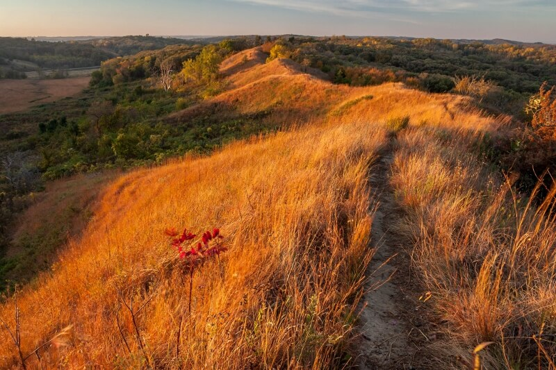 Loess Hills morning in Iowa (courtesy Michael Leland on Flickr CC)