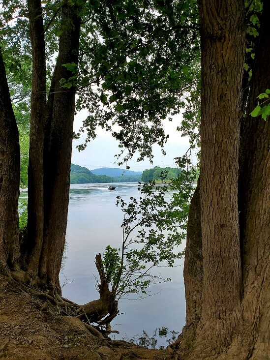 Looking out on the Potomac River near the C&O Canal lockkeeper house at Lander MD (photo by Sheila Scarborough)