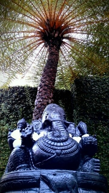 Morning in Kerala with Ganesh and palm tree (photo by Sheila Scarborough)