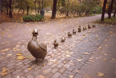 Moscow duckilngs