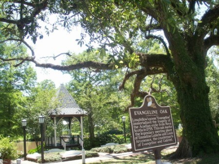 The Evangeline Oak, St. Martinville, Louisiana