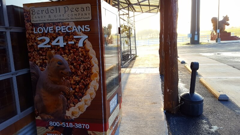 Pecan and pie vending machine plus famous squirrel statue at Berdoll's in Bastrop on Highway 71 near Austin TX (photo by Sheila Scarborough)