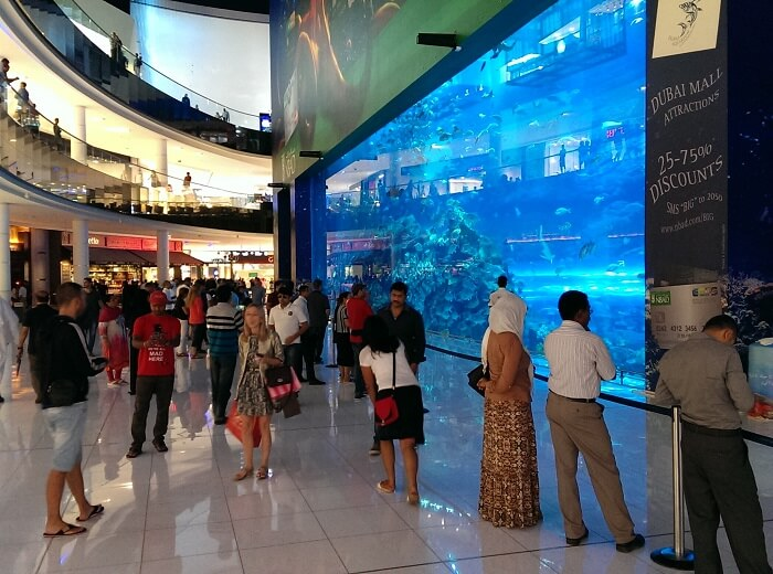 People watching at the giant aquarium in Dubai Mall (photo by Sheila Scarborough)