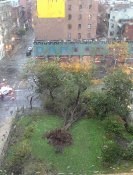 Hurricane Sandy Topples a Tree on Houston Street, NYC
