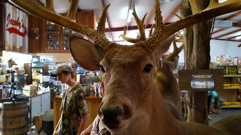 Surprising places to eat in Texas - shop for hunting gear and dine at the cafe at Jacoby's in Melvin TX (photo by Sheila Scarborough)