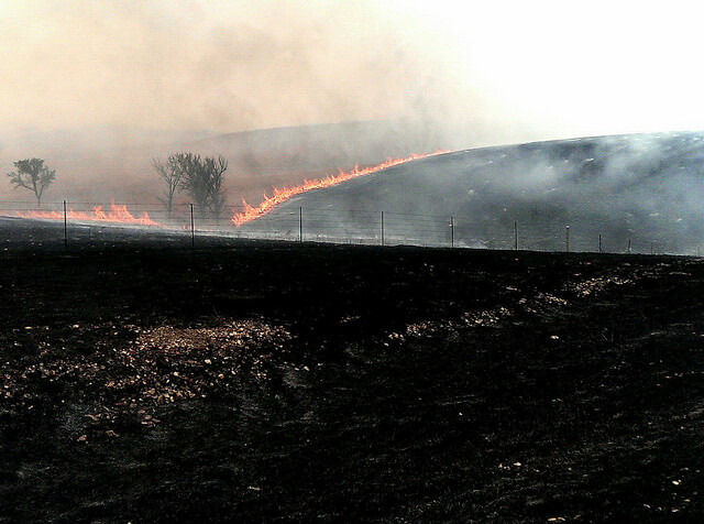 Springtime controlled prairie burn in the Kansas Flint Hills (photo by Sheila Scarborough)