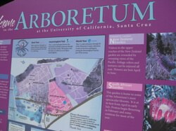 The Santa Cruz Arboretum: a living museum for plants of the Southern Hemisphere and California