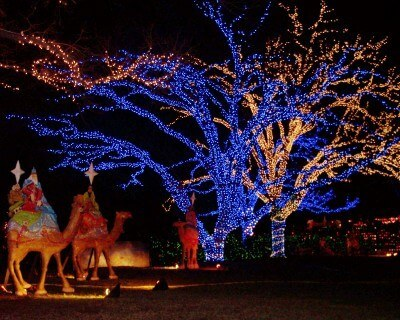 The Three Kings on the Trail of Lights,