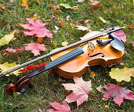 autumn maple leaves fiddle cape breton
