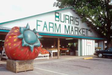 Burris Farm Market, Loxley Alabama (courtesy Michael Stern at Roadfood.com)