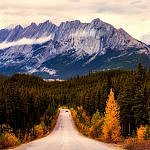 autumn alberta mountains aspen