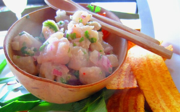 House Ceviche