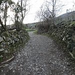carlingford mountian path Ireland