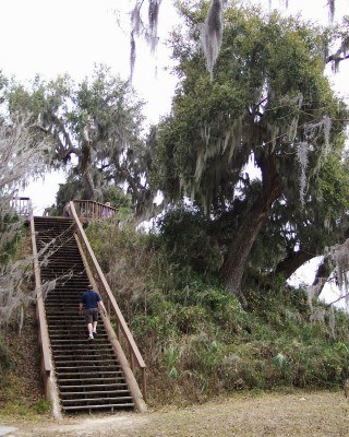 One of the pre-Columbian mounds at Crystal River Archaeological State Park, Florida (Scarborough photo)