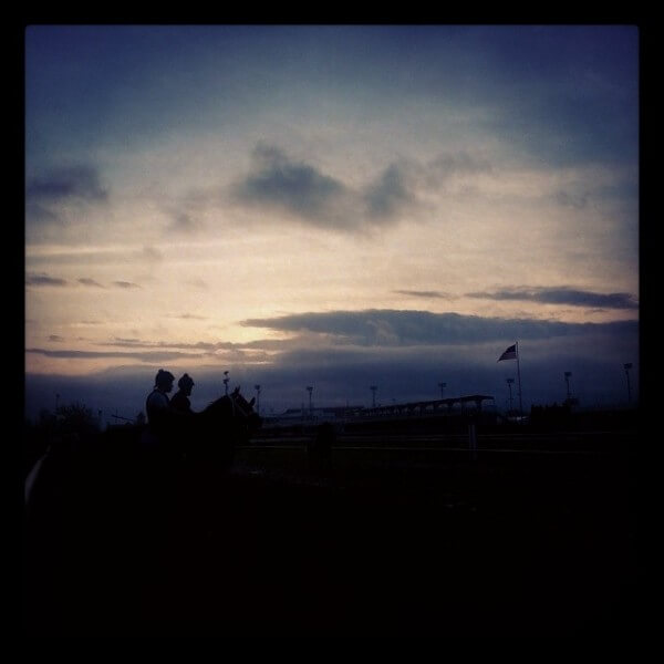 Horses silhouetted against the rising sun