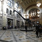 dippy dinoaur Kelvingrove glasgow scotland by kerry dexter