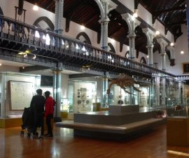 Musuem Glasgow Scotland Hunterian