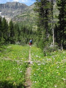 Where are we going? Where have we been? On the trail in Glacier National Park