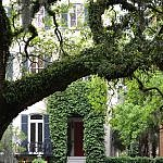 savannah georgia historic district