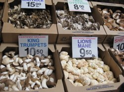 A variety of mushrooms for those who are hobbits at heart, at the San Francisco Ferry Terminal.