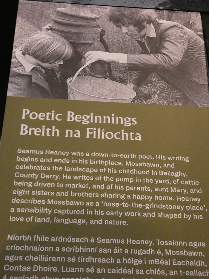 seamus heaney beginnings ireland