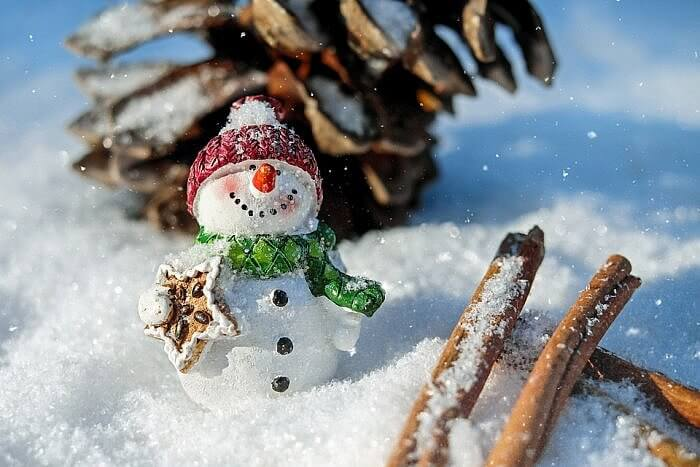 snow man with gift