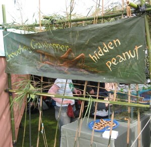 wildfood_festival_NZ